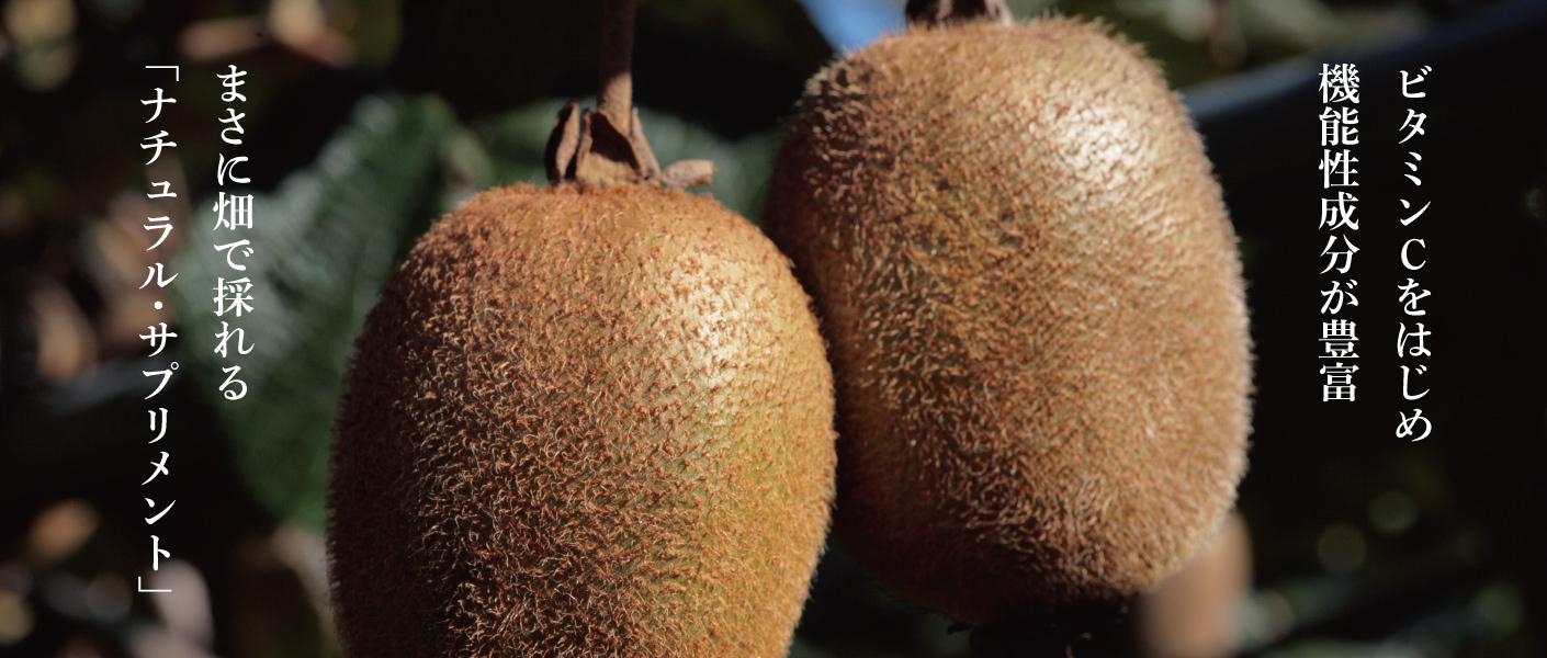 ビタミンCをはじめ 機能性成分が豊富 まさに畑で採れる「ナチュラル・サプリメント」