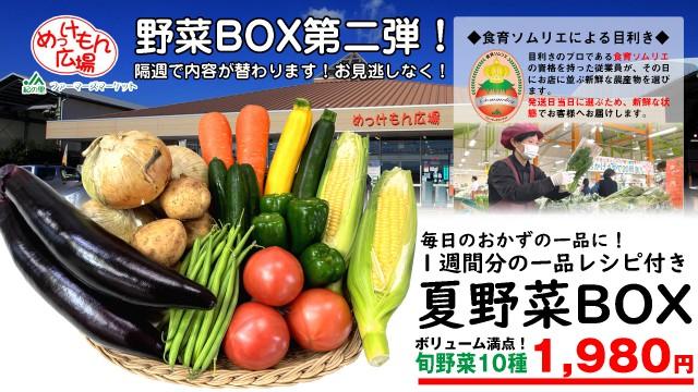夏野菜ボックス第二弾 copy