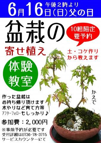 盆栽の寄せ植え講習会 copy