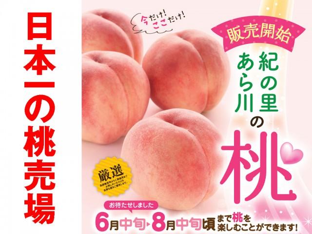 日本一の桃売場