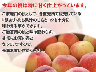 今年限定!『訳あり』桃がお買い得!!