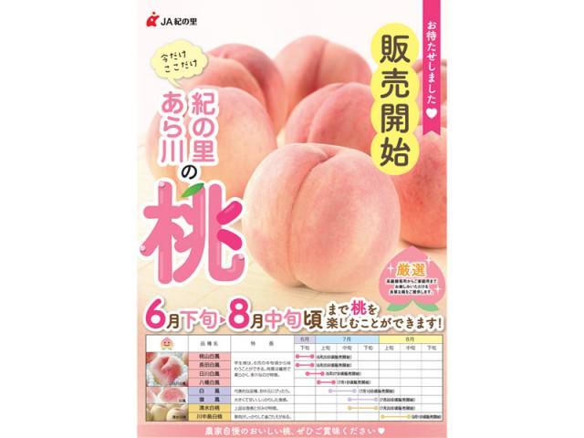 201606-08桃販売 copy