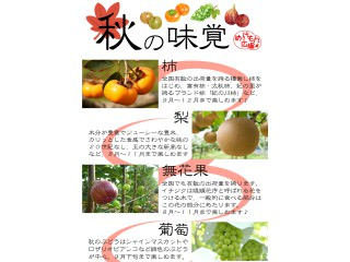 秋の味覚 地場産果物編