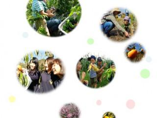 平成27年度 農林水産省「消費者ニーズ対応型食育活動モデル事業」