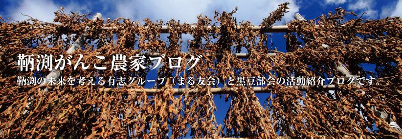 鞆渕がんこ農家ブログ